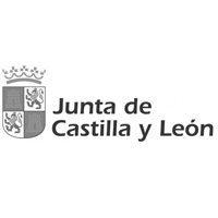 junta-castilla-leon-camisetas-personalizadas-bichobichejo | camisetasecologicas.es